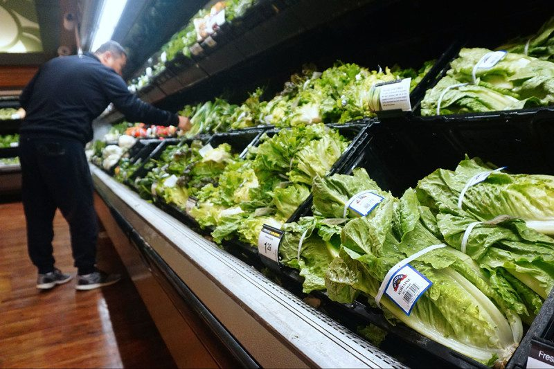 Coli Outbreak Linked to Romaine Lettuce Claims Its First Fatality