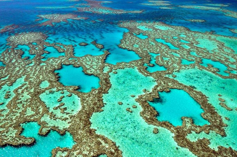 The Great Barrier Reef has died 5 times in the last 30,000 years
