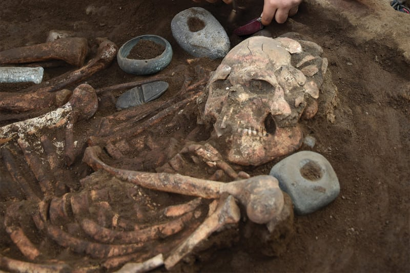 a human skull being excavated