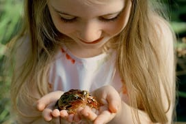 A girl holding a frog