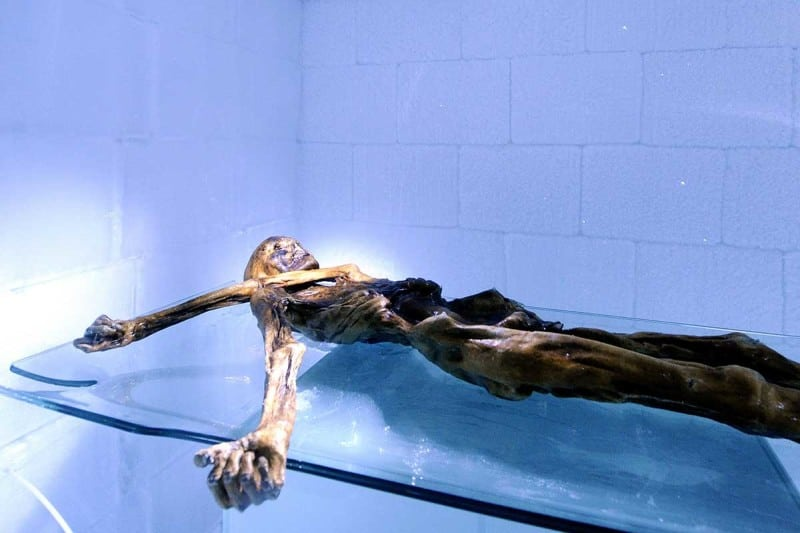 Ötzi lived more than 5000 years ago but was mummified in a glacier