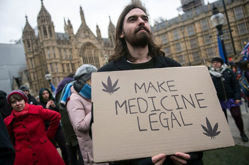 Cannabis Protestor