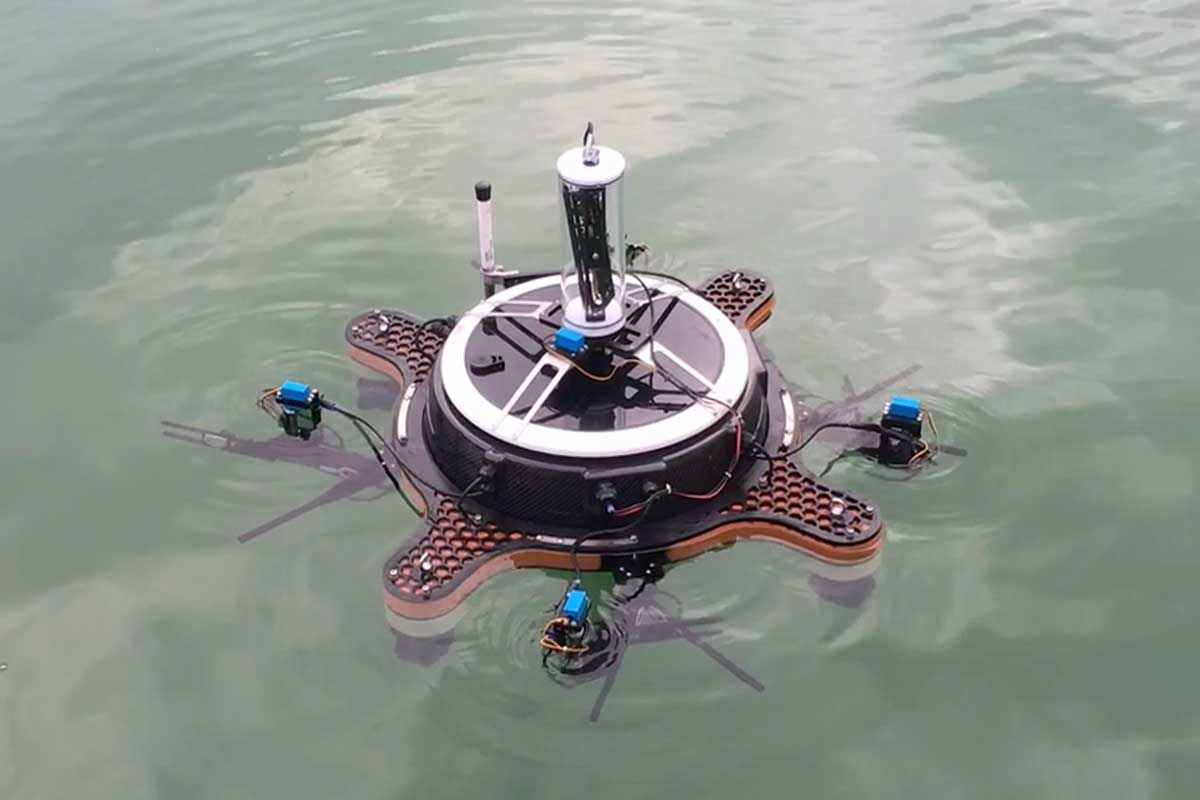 Swarm of robot wildlife will check for life in an Italian lagoon