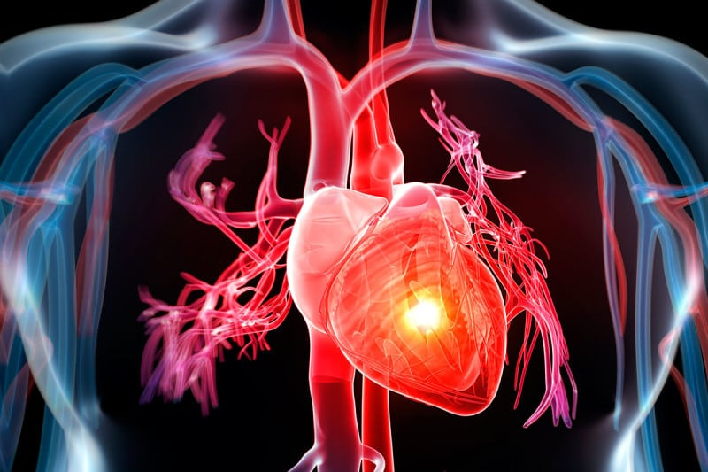 Stem cells may help the heart recover after a heart attack
