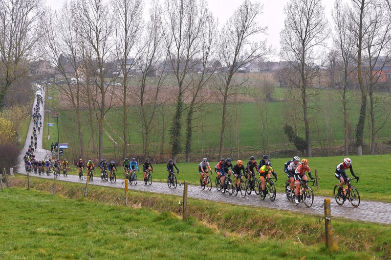 A pack of cyclists pass bare trees in the Belgian countryside