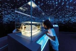 Atlantic-football-fish_-deep-sea-CREDIT-Trustees-of-the-Natural-History-Museum