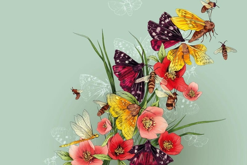 flowers/bees