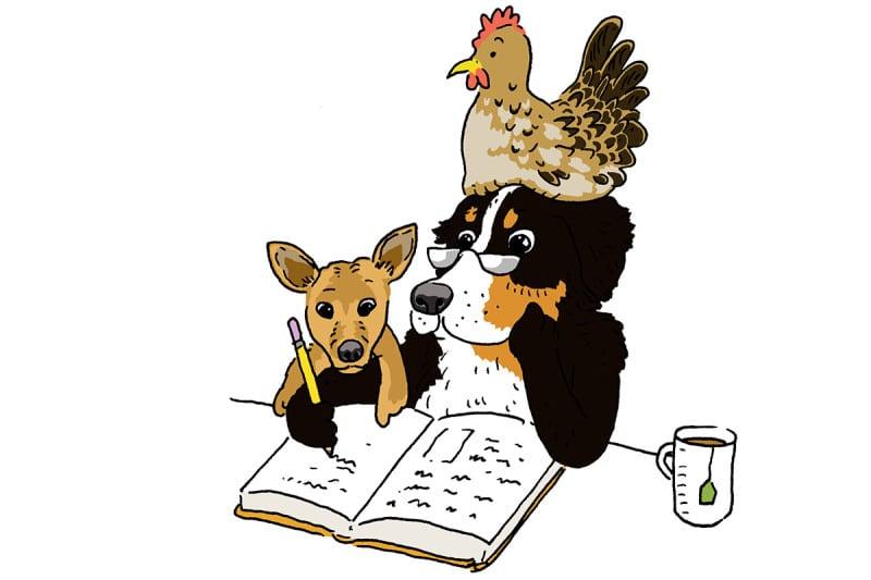 dog and chicken cartoon