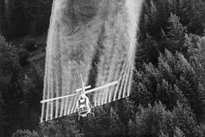 A plane spraying crops