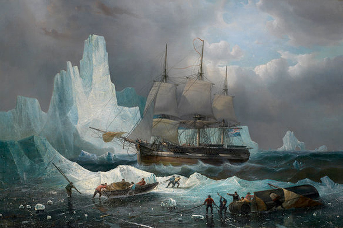 Doomed crew seeking Northwest Passage didn't die from lead poisoning