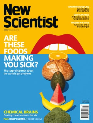 New Scientist issue 3195 cover